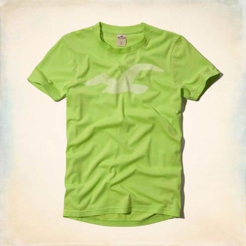 Camiseta Hollister Masculina Warner Springs Tee - Lime