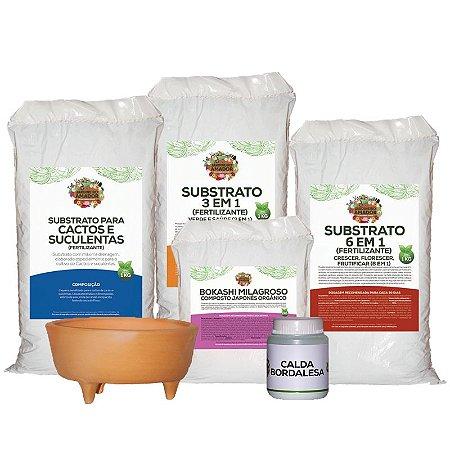Kit Para Plantar Cactos e Suculentas do Jardineiro Amador