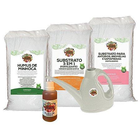 Kit Para Plantar Samambaias do Jardineiro Amador