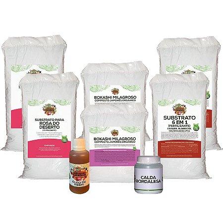Kit Para Plantar Rosa do Deserto do Jardineiro Amador