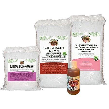 Kit Para Começar a Plantar Bromélia do Jardineiro Amador