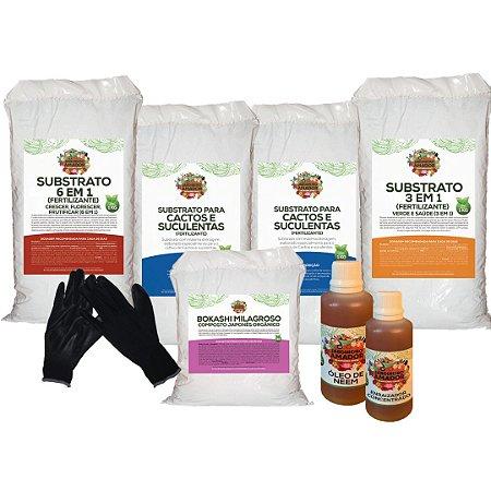 Kit Para Plantar Cactos e Suculentas em Vaso
