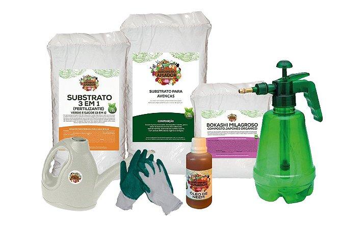 Kit Para Plantar Avencas