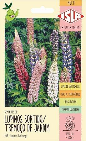 Sementes de Lupinos Sortido / Tremoço de jardim