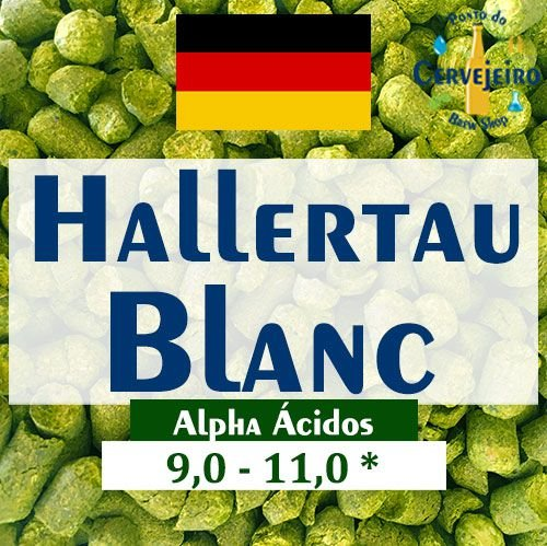 Lupulo Blanc Hallertau Alemão - 50g