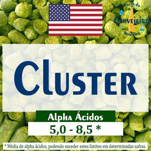 Lúpulo Cluster Americano - 50g