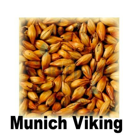 Malte Munich Dark Viking (25 EBC) - Kg