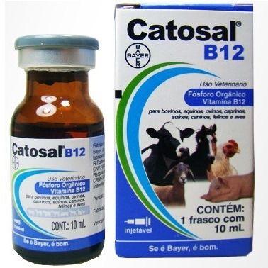 CATOSAL B12 10 ML