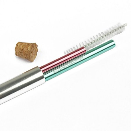 PROMOÇÃO - Kit Case Alumínio + 2 Canudos + Escova Higienizadora