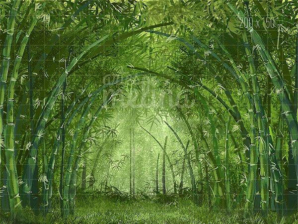 Fundo Fotográfico Floresta de Bambus