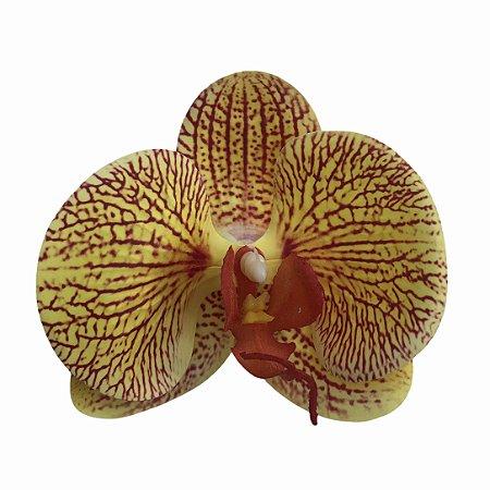 Presilha de orquídea silicone amarela listras