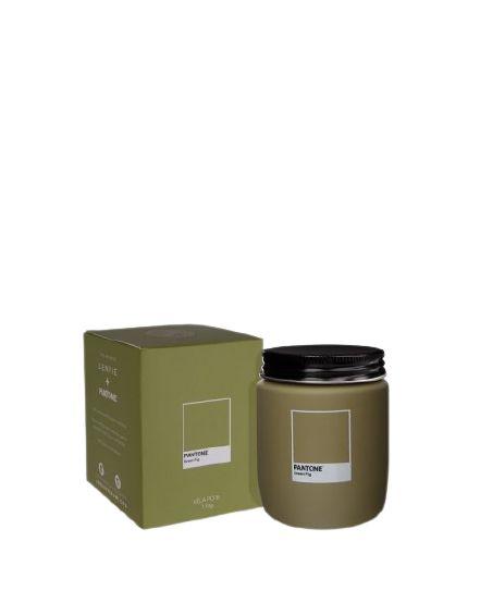 VELA POTE GREEN FIG PANTONE LENVIE - 170GR