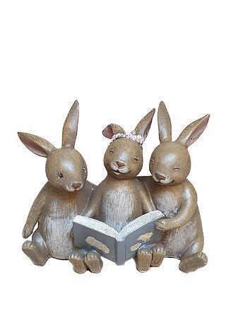 Trio de coelhos lendo em resina