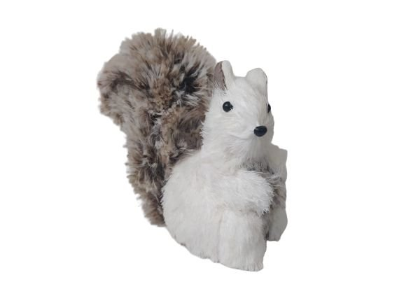 Esquilo em Pe Branco
