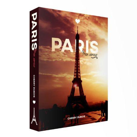 CAIXA LIVRO BOOK BOX PARIS