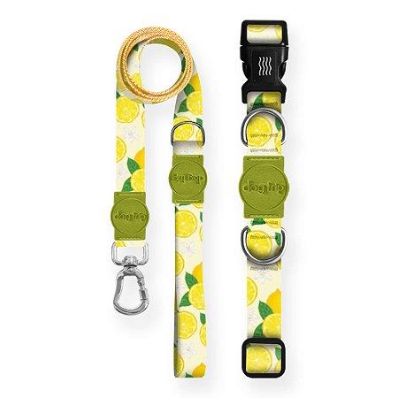 Kit Guia Premium + Coleira Premium Lemon