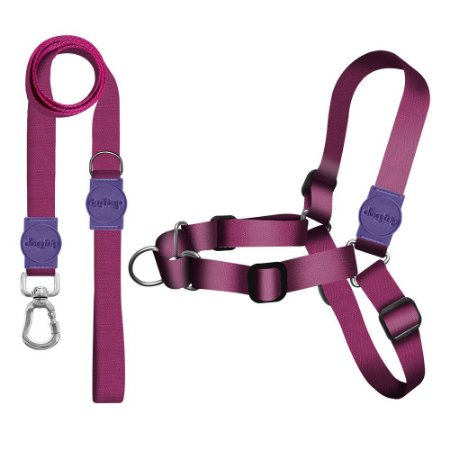 Kit Guia Premium + Peitoral Antipuxão Classic Purple