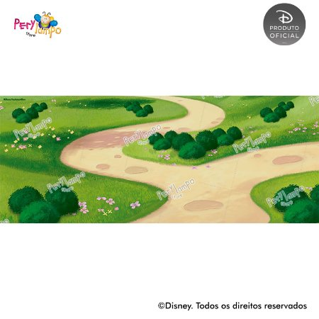 Lona fosca para piso - Piquenique do Mickey - 5,0 x 2,0m