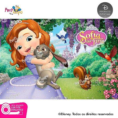 Festa na Caixa-Princesa Sofia