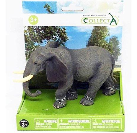 Miniatura Elefante Africano Animais Selvagens Set 2 Collecta