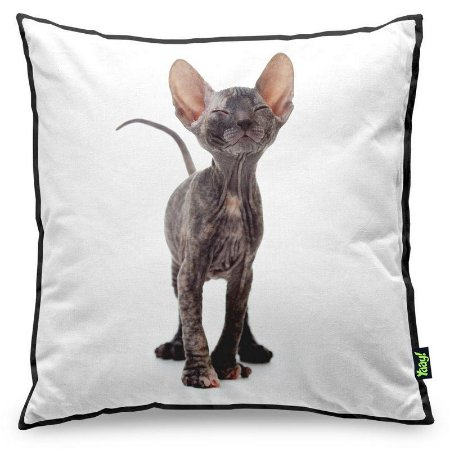 Almofada Love Cats Black Edition - Hairless Sphynx