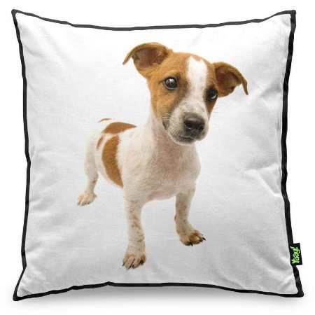 Almofada Love Dogs Black Edition - Jack Russell