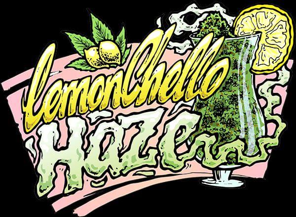 Lemonchello Haze Feminizada Fotopériodo Pack c/ 5x