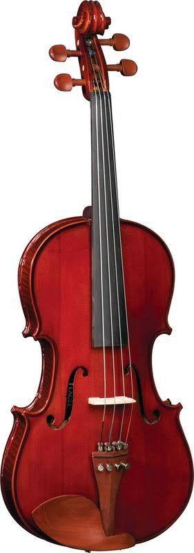 Viola Clássica 4/4 HVA 110 - HOFMA