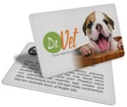 Cartão Visita Off-Set - PVCC17 - 1000 Unid - Pvc Cristal 50g - 4x1
