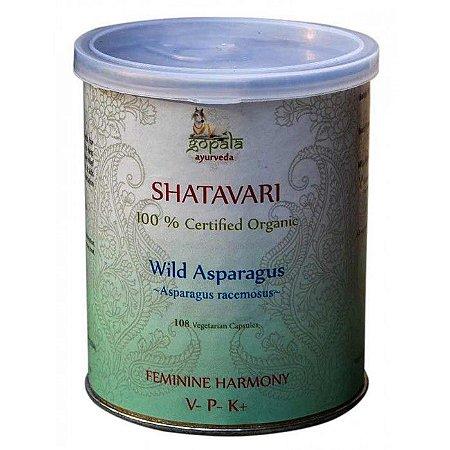 Shatavari ( Asparagus racemosus ) em Cápsulas organicas - Original da Índia