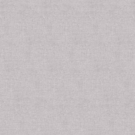 Papel de Parede Infantil Renascer Liso Cinza 6259