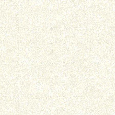 Papel de Parede Homeland 2 Textura HL220203R