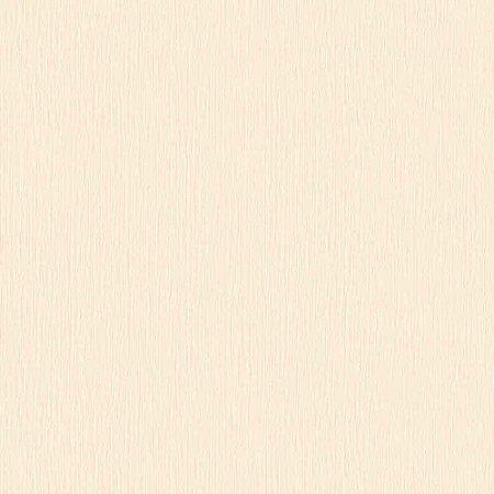Papel de Parede Homeland 2 Textura HL220305R