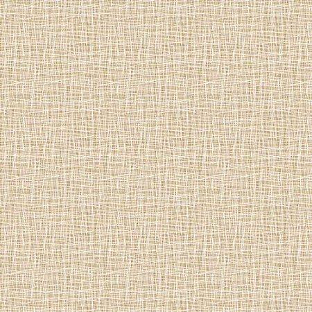 Papel de Parede Homeland 2 Textura HL220508R