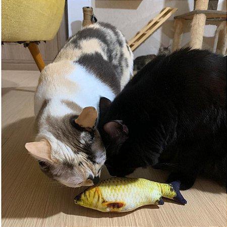 Peixe de pelúcia com catnip
