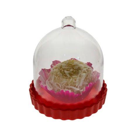 Mini Cupula - pacote com 10 unidades