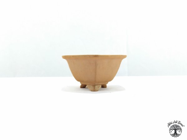 Vaso Hexagonal Jorge Ribas 7,5x8x4 cm