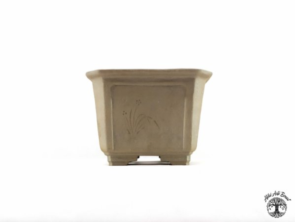 Vaso Semi Cascata Jorge Ribas  11x11x9 cm