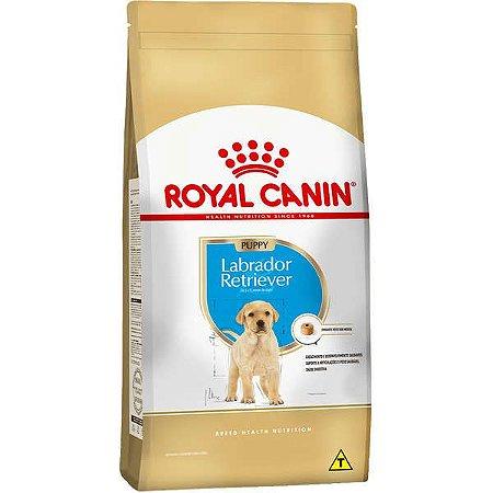 Ração Seca Royal Canin Puppy Labrador Retriever para Cães Filhotes 12 Kg