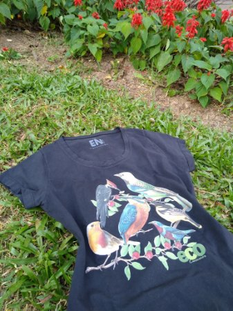 Camiseta Feminina - Aves