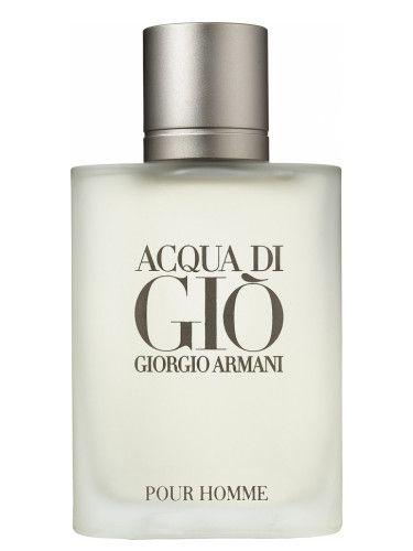 Acqua di Gio MEN 100ml - Giorgio Armani