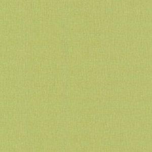 Papel de Parede Liso Verde Alga