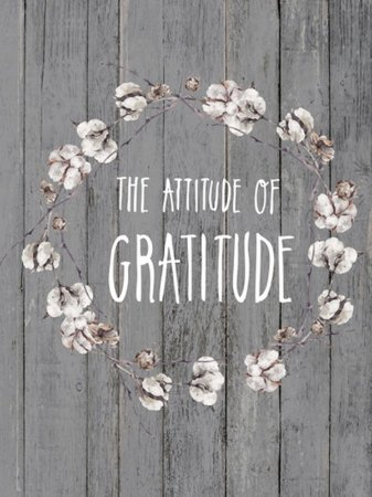 Painel Gratitute