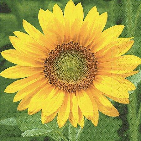 Pacote 20 Guardanapos Sunflower