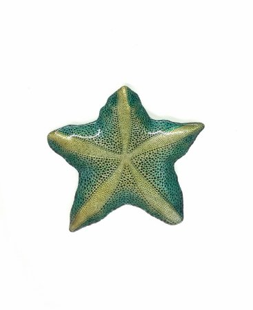 Estrela Marina Decorativa Azul c/ Ouro Vylux