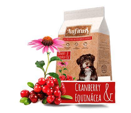 Biscoito Aufitus para Cães Filhotes Sabor Cranberry e Equinácea - 200 gr