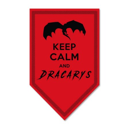 Placa Decorativa 18x30 - DRACARYS