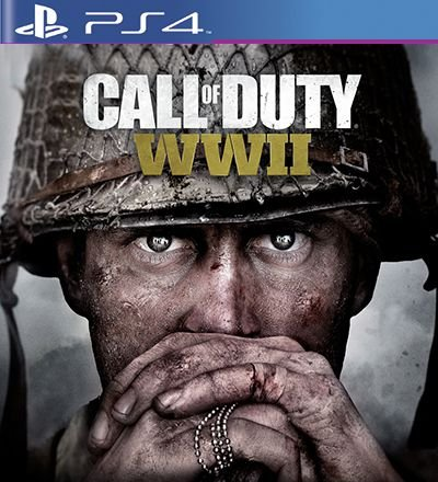 Call of Duty WW 2 - PS4 Mídia Digital
