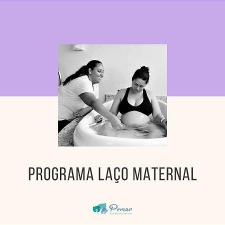 PROGRAMA LAÇO MATERNAL - ACOMPANHAMENTO DE GESTANTES
