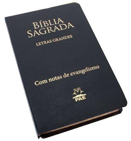Biblia Sagrada - Letras Grandes